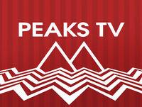 Peaks TV - a Twin Peaks Podcast