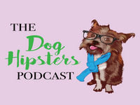 THE ZEN DOG Podcast with Matt Beisner