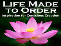 Life Made to Order#138:Law of Attraction: Energetic Goals Make Zero Logical Sense