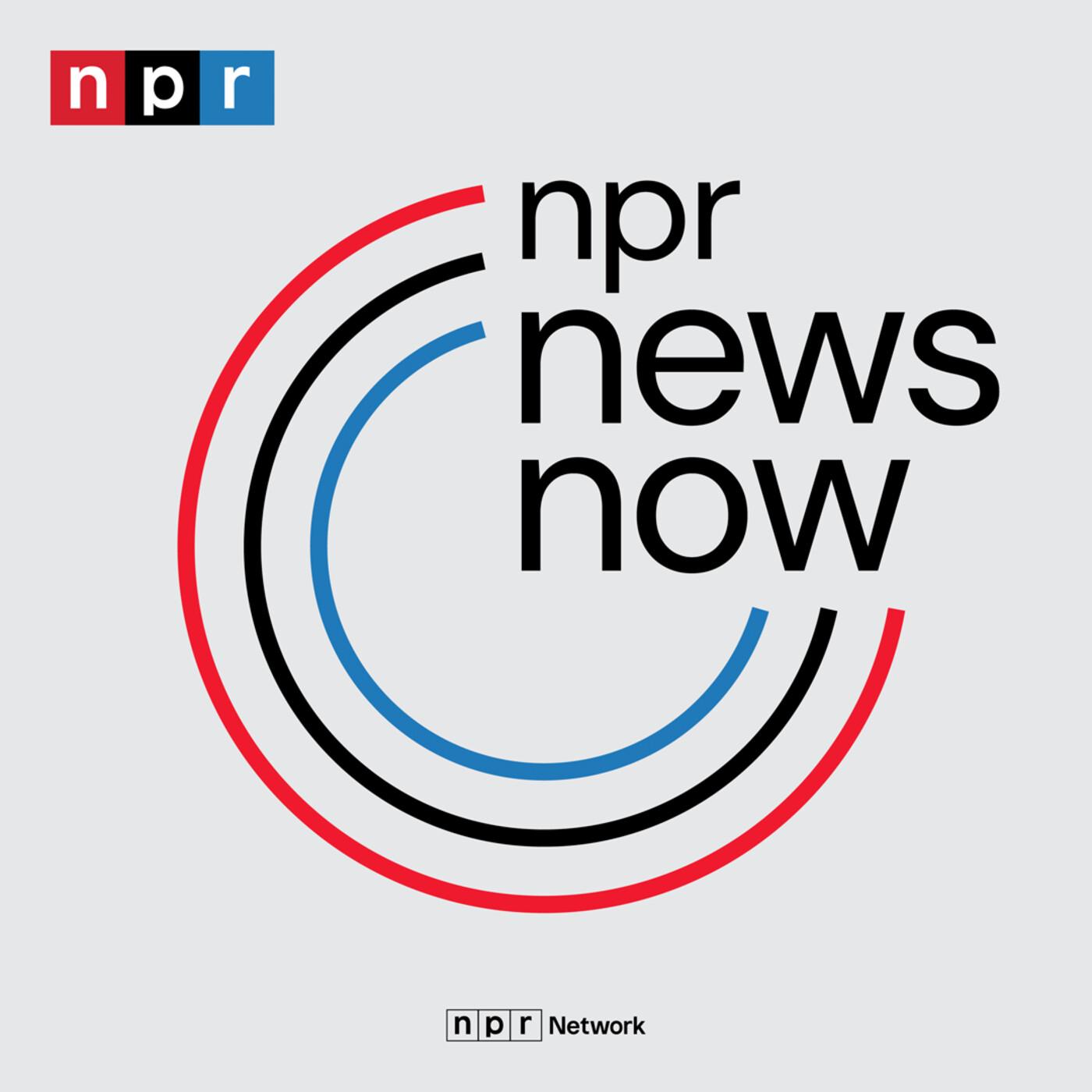 NPR News: 10-19-2020 10PM ET