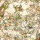 Astrologia Mundial : preguntas y respuestas