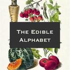 Edible Alphabet