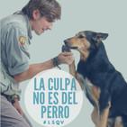 El encantador de perros argentino