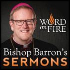 Word On Fire Sermons