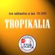 Tropikalia-25-01-2020