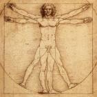 Morfología - Anatomía