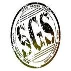 Kingstongrado vol 54 -Nowa Reggae-