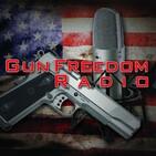 GunFreedomRadio EP267 Virtual 2020 2A DC Rally: Bree Michael Warner
