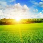 dejar salir el sufrimiento - tu lado sombra Meditaciones