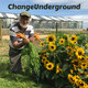 Episode 199. First Principles Continued: Seeds | #worldorganicnews 2020 01 20