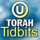 Parshat Vaeira - 5771: Torah Tidbits Audio