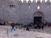Gazas unge vil ud