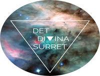Divina Bokklubben #2 HITTA DIN SANNA STORY av Katrin Sandberg