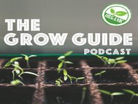 Episode 41: Square Foot Gardening with Mick Manfield