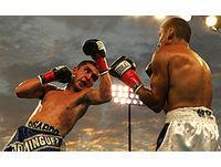 Group Boxeo y deportes de contacto