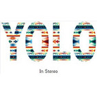 Yolo In Stereo