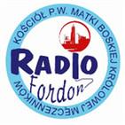 Radio Fordon