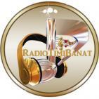 Radio Timi Banat