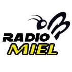 Radio Miel Puerto Rico