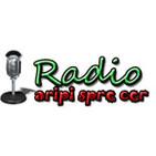 Radio Crestin Aripi Spre Cer Predici