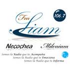 106.7 FM SIAM NECOCHEA