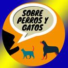 Sobre perros y gatos podcast