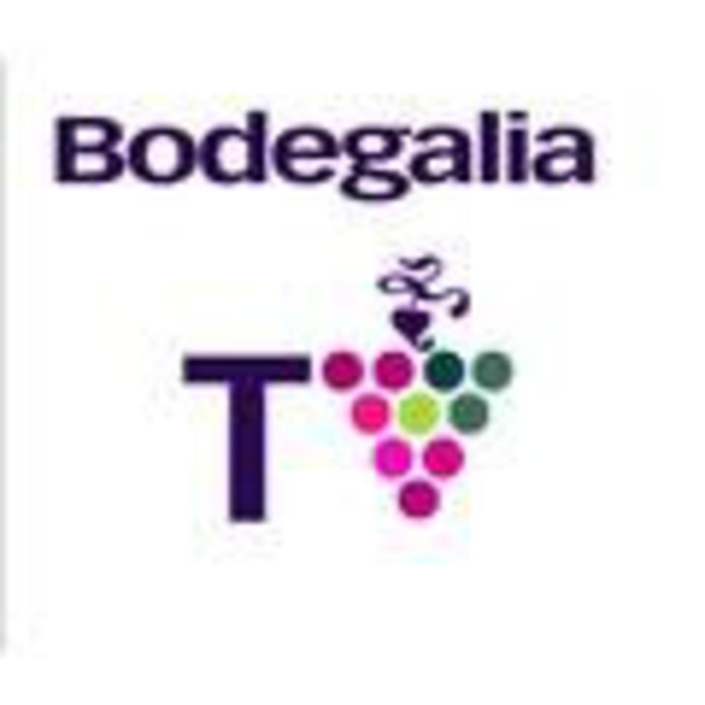 BodegaliaTV