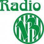VERDE13 RADIO