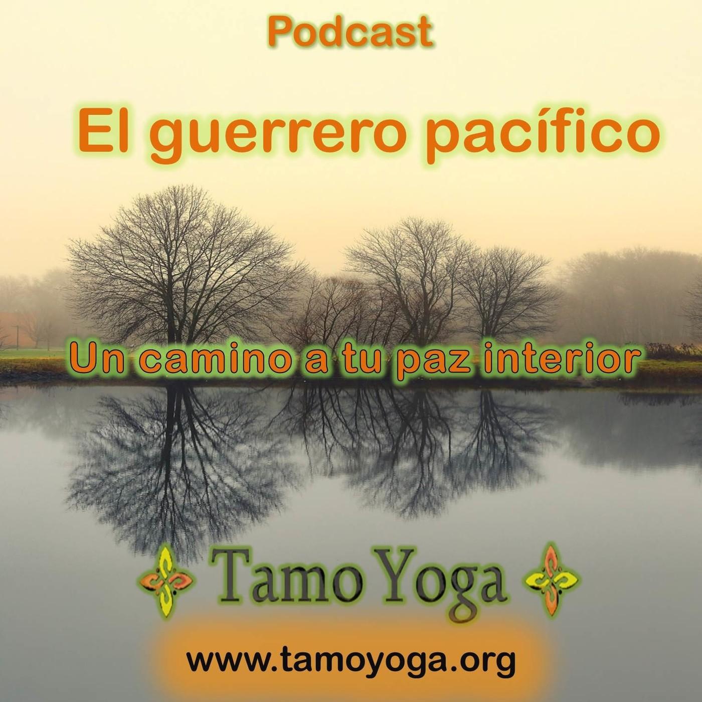 Xavi Tamo yoga