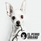 El perro urbano