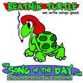 Beatnik Turtle