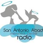 San Antonio Abad - Mascotas