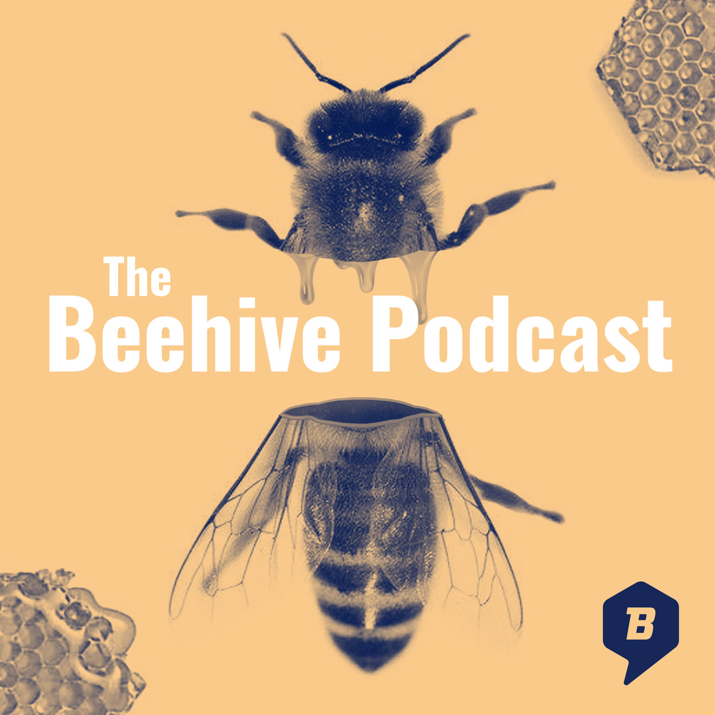 The Beehive Podcast